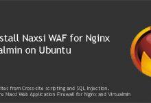install Naxsi WAF for Nginx and Virtualmin